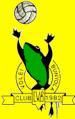 escut fons groc